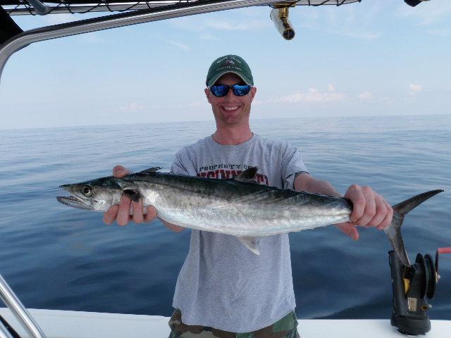 Topsail beach fishing charters fishing guide blog for Topsail island fishing